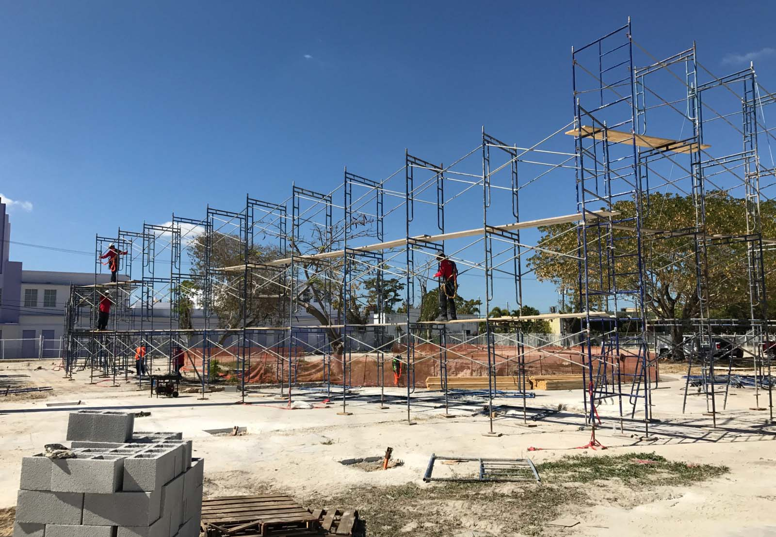 SCAFFOLDS OF FLORIDA